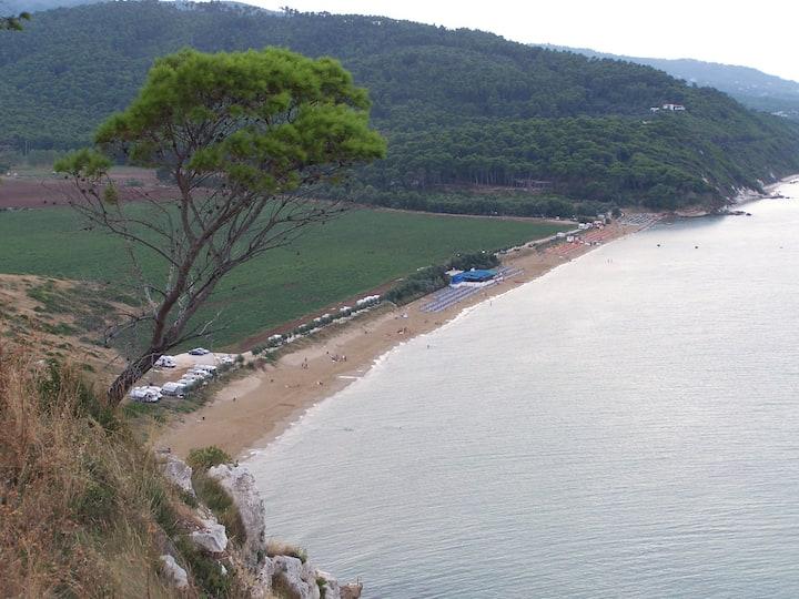 GARGANO-PESCHICI CASA NELLA PINETA