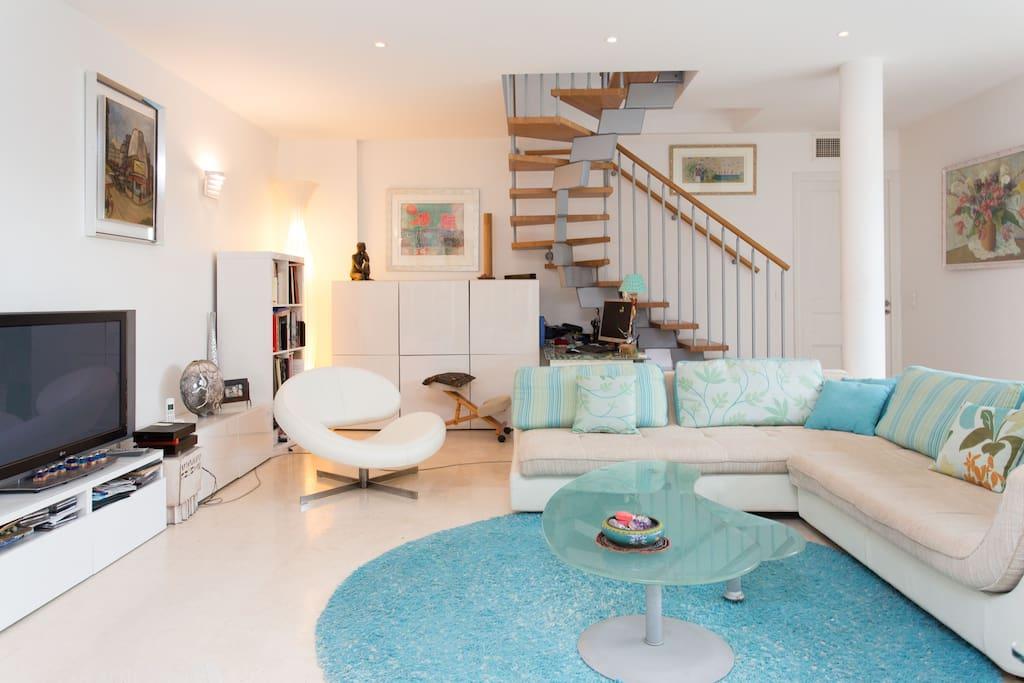 vaste living , décoration design, peil sud