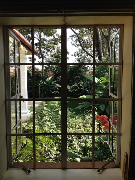 garden view from Elizabeth's room. The house set on in nearly 2 acres of garden and expansive lawns