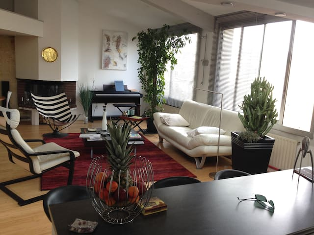 Large flat with terrace