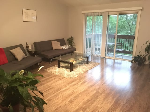 Stunning 1 Bed & 1 Bath Condo in West Plaza