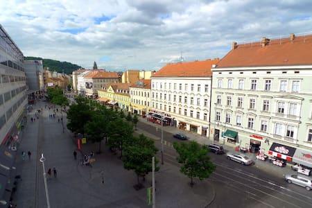Wonderful apartment in the centre - Prague - Apartment