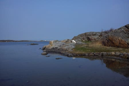 Room by the sea - Gothenburg - Island