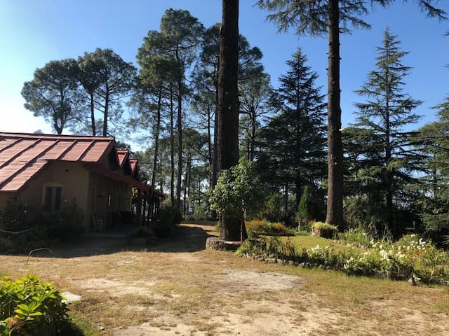 Charming BR w/ meals, garden in the ♥ of Ranikhet