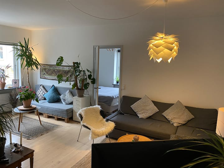 Central and cozy Apartment close to the sea