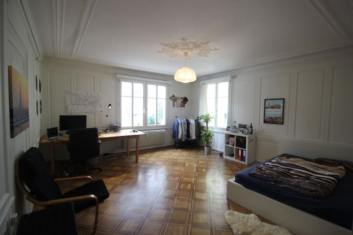 Large bedroom with historical wooden floor and beautiful plaster ornament on the ceiling
