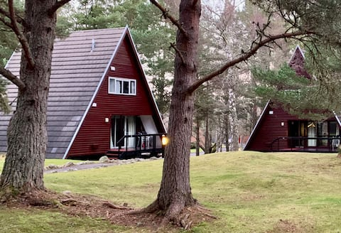 Aviemore Lodge AVAIL Aug 22-29/21 & Jan29-Feb5/22
