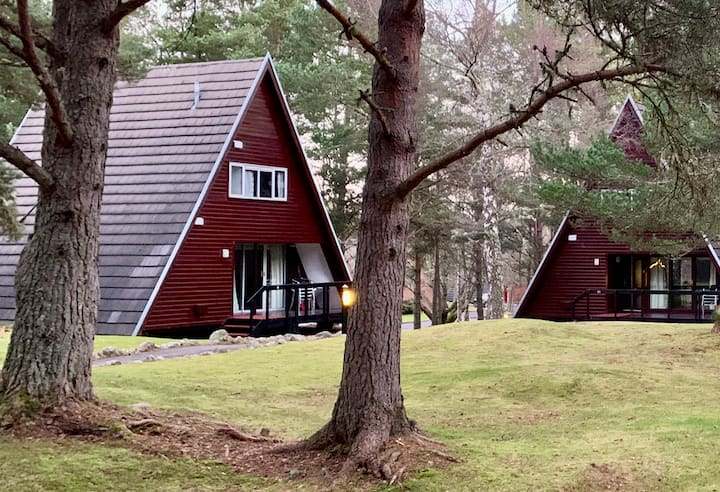 Aviemore Holiday Lodge - NEXT Available Sept 19-26