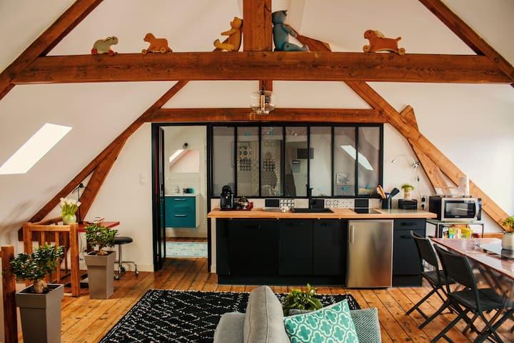 Le Perchoir, appartement de 60m², en hyper centre