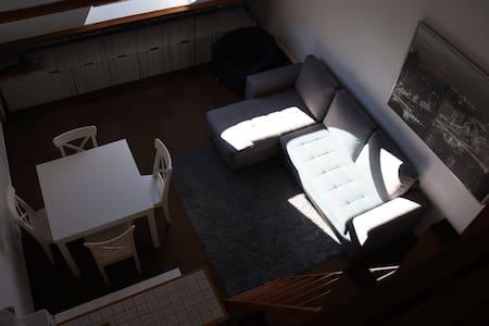 Le Lioran apt 2 pièces + mezzanine - Laveissière - Apartament
