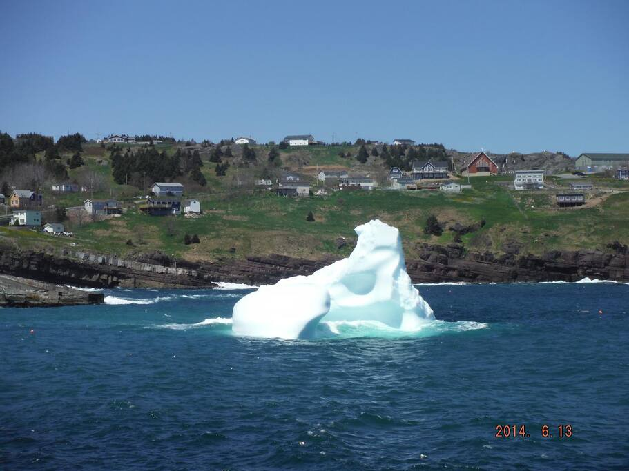 Iceberg in Flatrock harbor.  Taken June 2014.