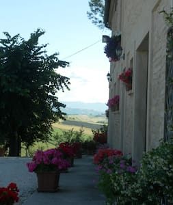 """All'ombra degli Ulivi"" B&B - San Marcello - B&B"