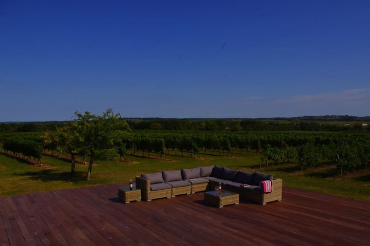 Bordeaux vineyard B&B nr St Emilion - Camiran
