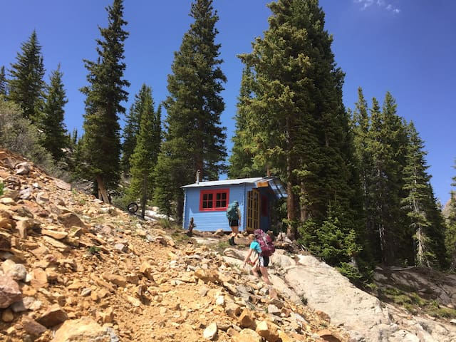 Two Hike Jeep Ski In/Out Cabins near Vail / Aspen
