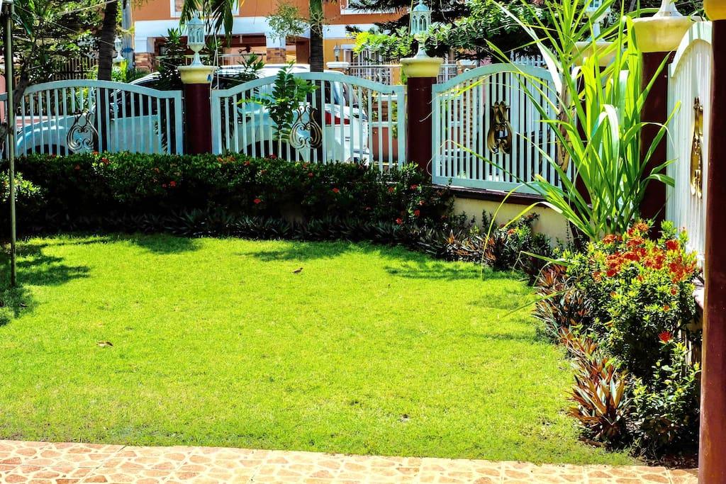 The garden in bermuda grass