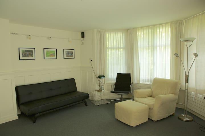 Two room apartment in Zurich - ซูริก - อพาร์ทเมนท์