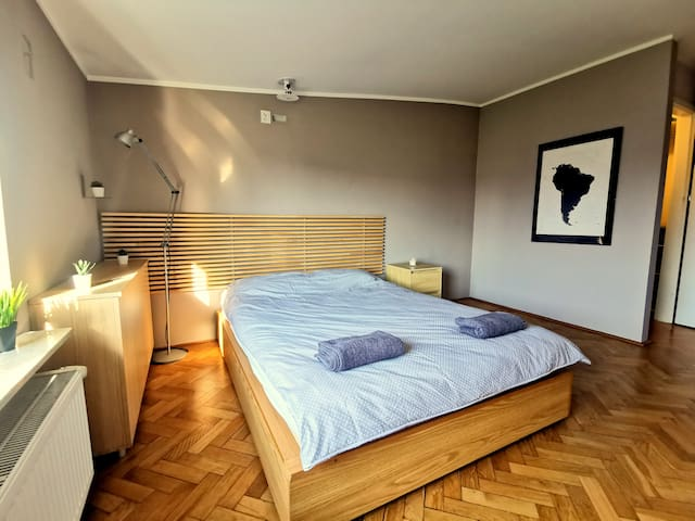 Comfortable studio in central Warsaw