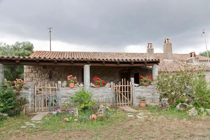 Farmhouse Stazzu lu Malchesi - Арзакена - Дом