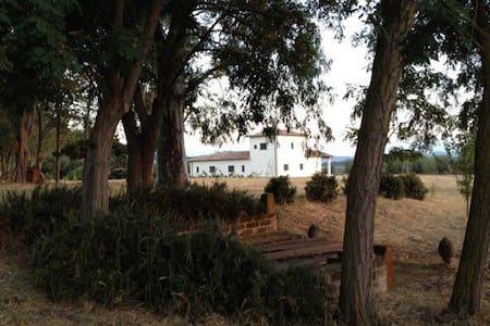LE CIVETTE in MAREMMA - Manciano - Casa de campo