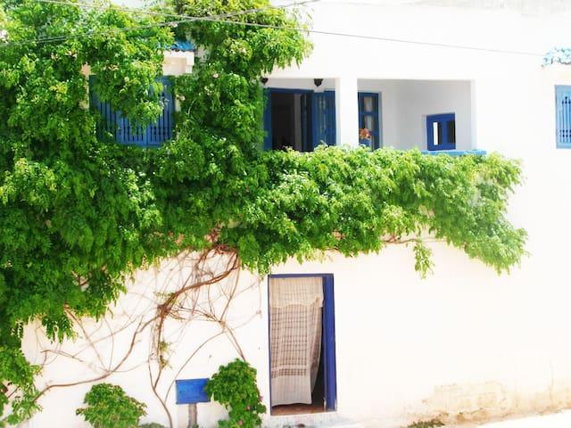 Chez Souad - Oualidia - Hus