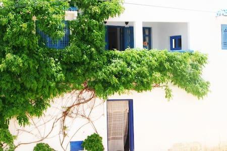 Chez Souad - Oualidia - Talo