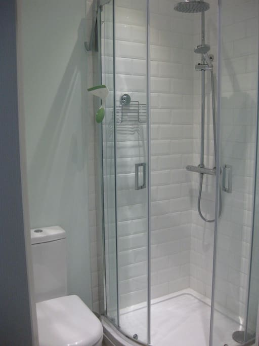 En-suite bathroom with thermostatic shower