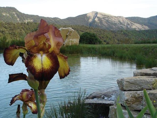 Mas de charme au coeur de la Drôme - Eygluy-Escoulin
