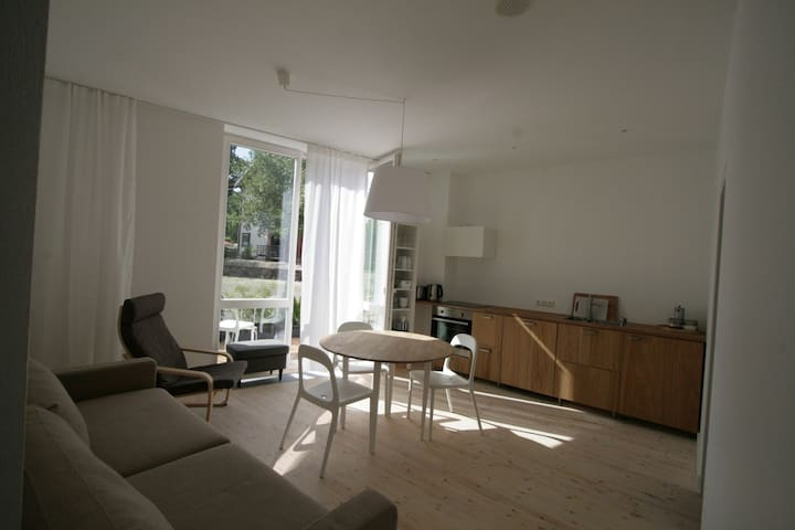 Bright and cosy 2BD with terrace - Juodkrantė - Квартира