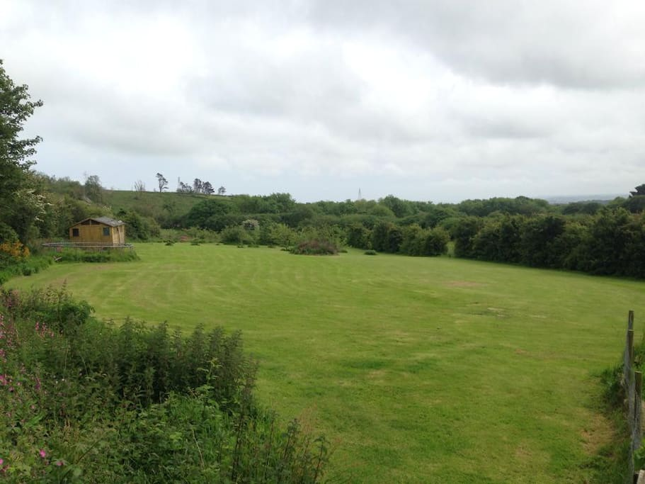 Large 1.5 acre field, with fruit trees, camping and fire area.