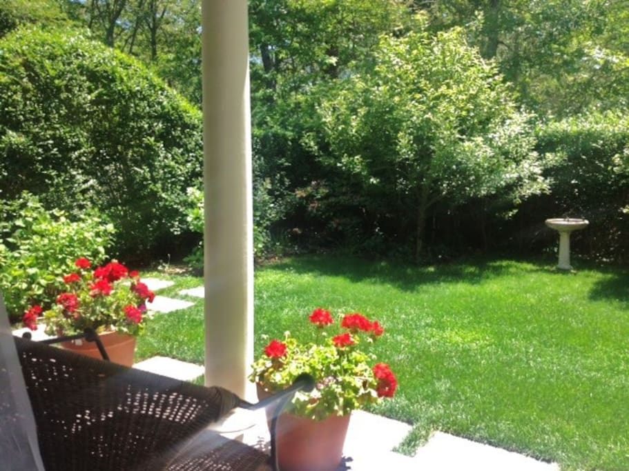 A view from the porch