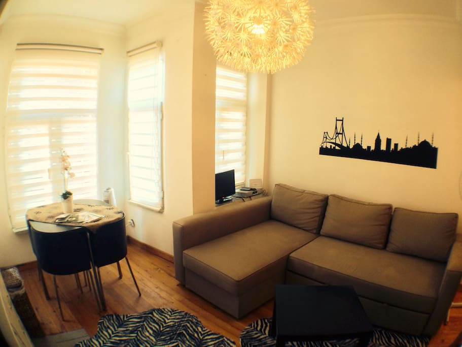 Living Room. The double sofabed is very comfortable for sleeping for 2 people.