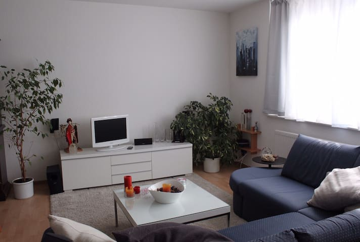 Voll ausgestattet 2½-Zimmer-Wohnung