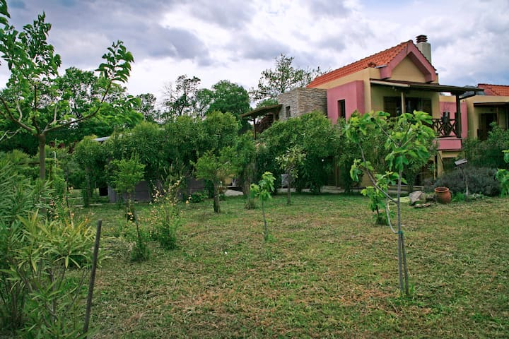 Garden and house,front view