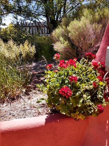 Experience  The Beauty of Earthship Living... - El Prado