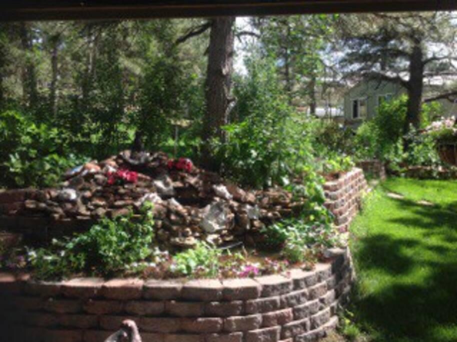 Gardens in yard