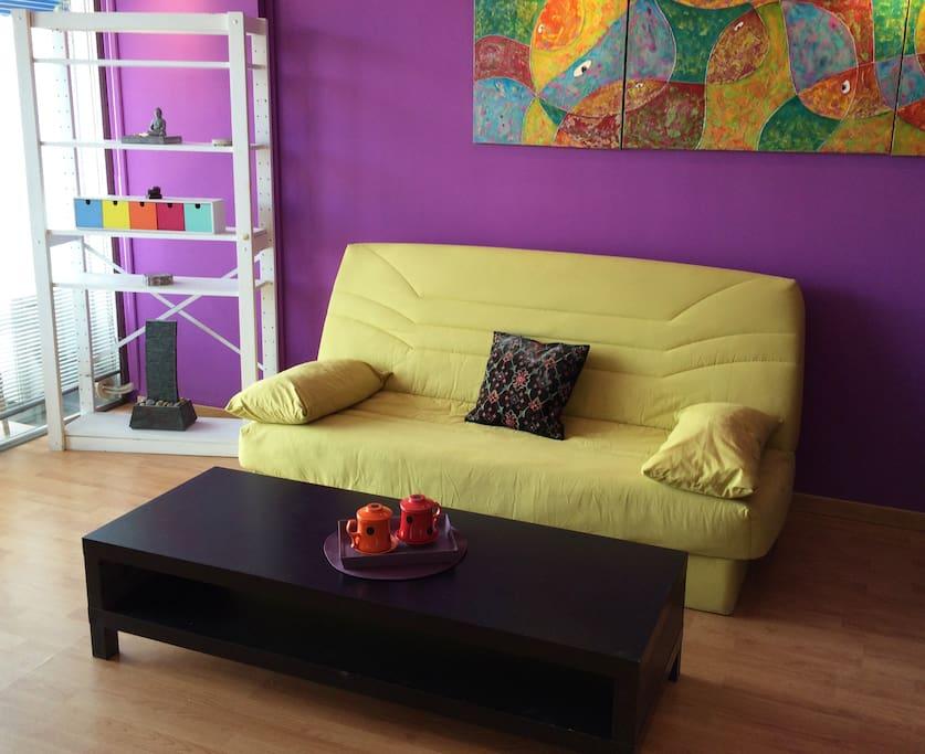 Salon, canapé lit, TV, internet