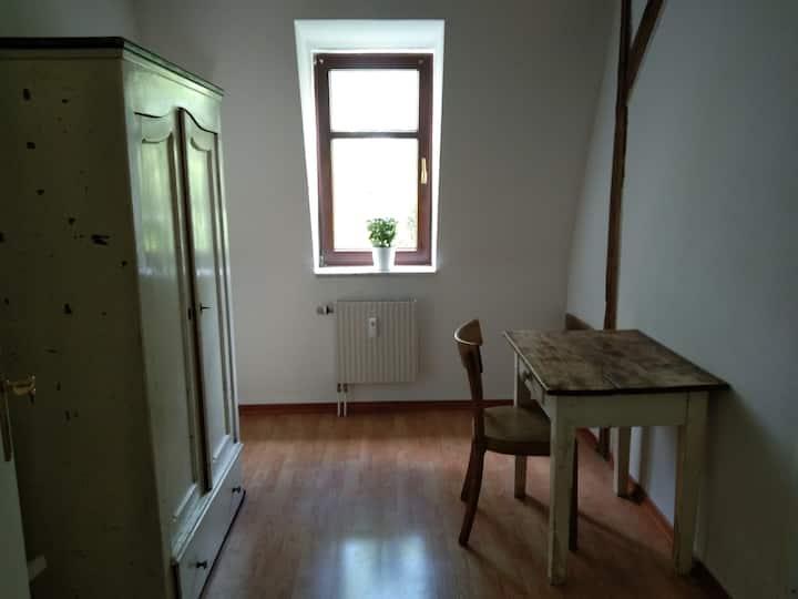 Zentrale gemütliche Wohnung in Dresden-Neustadt