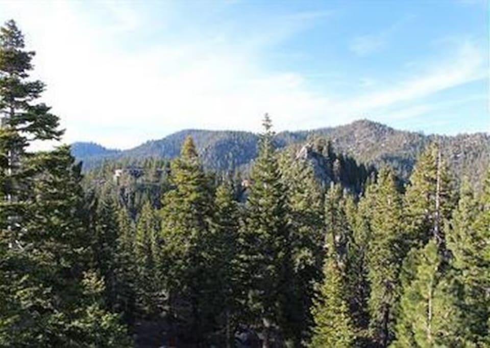 Boulder court penthouse stateline appartamenti in for Animali domestici della cabina del lake tahoe