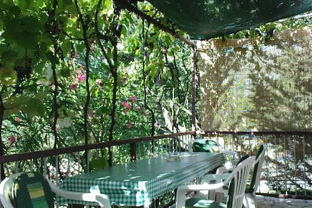 1-bedroom apartment in nature for 4 persons - Bribir - Квартира