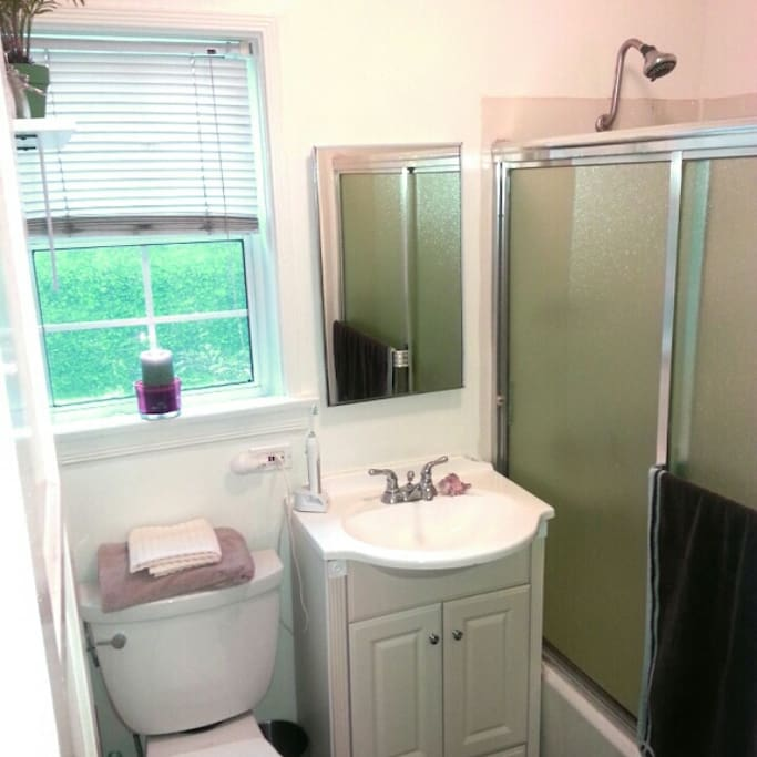 Clean and cute bathroom with very tall shower head and incredible water pressure!