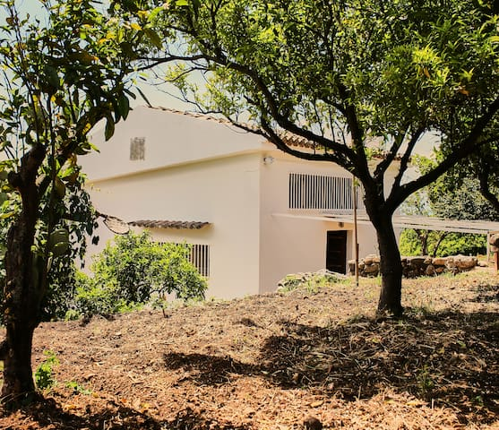 Airbnb La Petrizia Vacation Rentals Places To Stay