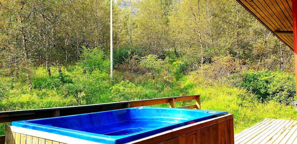 The privacy of the hot tub in our small but dense forest :-)