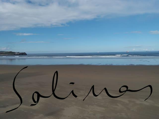 SALINAS.