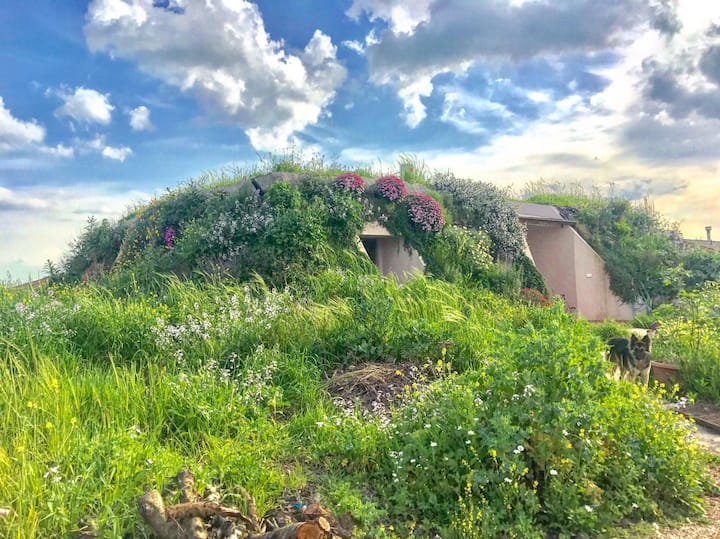 Earthship in  the golan