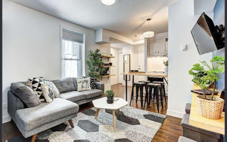 2 bedroom appartement in the heart of montreal