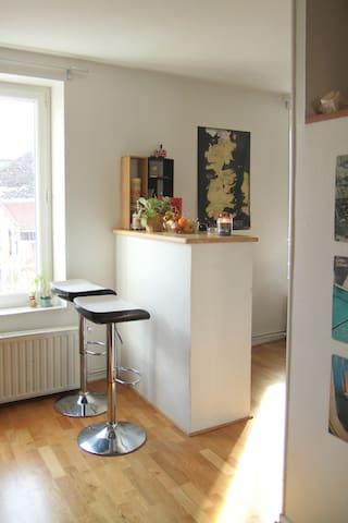 Lumineux Appartement Centre Ville - Clermont-Ferrand - Huoneisto