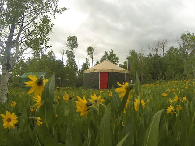 Mountain solitude, luxury of a yurt - Montpelier - Jurtta