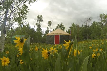 Mountain solitude, luxury of a yurt - Montpelier - Jurta