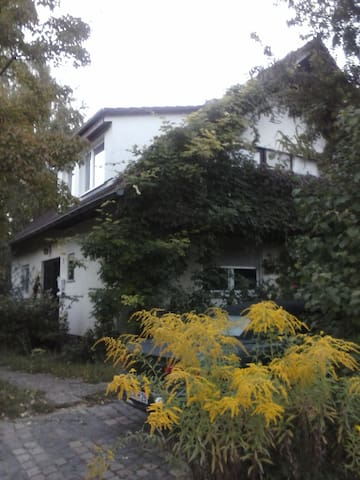 1 Room Appartment for 4 Person - Waldalgesheim - 一軒家