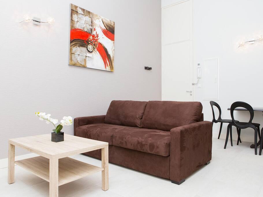 Studio avec beau séjour et canapé lit 2 places confortable.